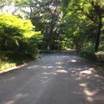 関東最大級「森林公園」